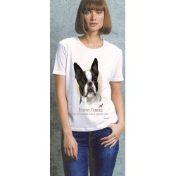 Boston Terrier Ladies T Shirt